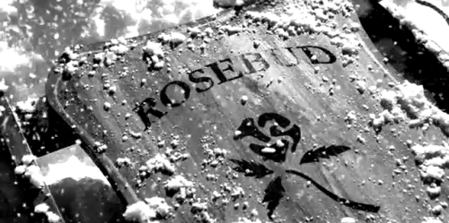 Rosebud was a sled.